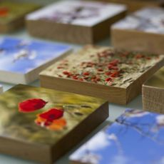 Selection of photographic wood blocks