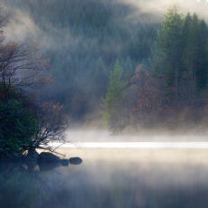 Early Morning Mist, Loch Ard