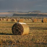 Autumn - Harvest with a hint of winter