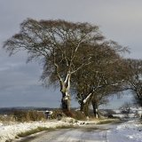 Winter - Winter near Faucheldene