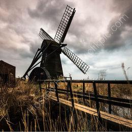 Stormy Heringfleet