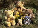 """Teddy Bears Picknick"""