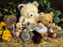 """Teddy Bears with Bunnies"""