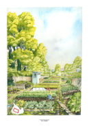 Allotments - Hampstead, London NW3