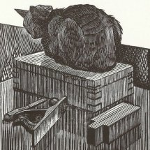Pastry the workshop cat (wood engraving 5 X 4 inches)