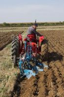 Tractor Ploughing - Rear View