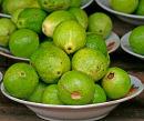 Local guava