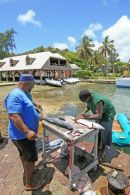 Antigua, Nelson's Harbour fishermen