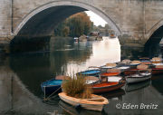 Richmond Bridge in Autumn 2