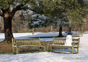 Snowman on a Bench