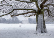 Marble Hill House in the Snow