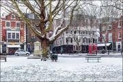 Richmond Green in Winter