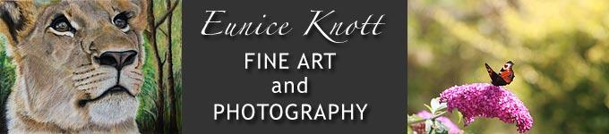 Eunice Knott Fine Art