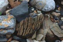Riverbed Rocks