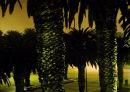 Misty Evening, Swakopmund 1
