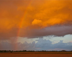 After the Storm 0345