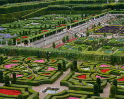 The Garden of Love at the Chateau of Villandry 0606