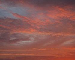 November morning on the Fens 0816