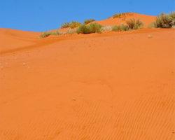 Sand Dune 1146