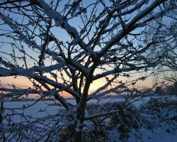 Winter sunrise 4756