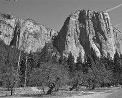 Yosemite National Park 5028a
