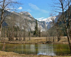 Yosemite National Park 5049