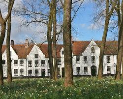 The Beguinage, Bruges 8096