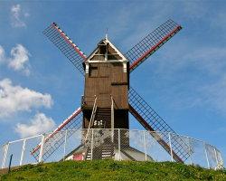 Windmills of Bruges 8137
