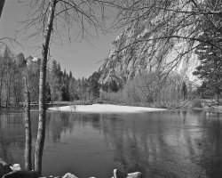 Yosemite National Park 5039a