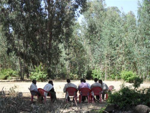 village elders discuss the case
