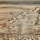 Oystercatchers return