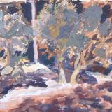 Edge of olive grove - SOLD