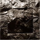 Leaf Square No.2 - 1997