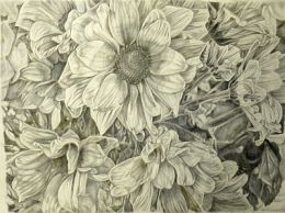 Daisy group, goldpoint and silverpoint
