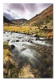Mardale Beck Motion