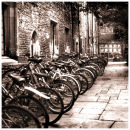 Bicycles in North Court