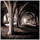 Fountains Abbey, Yorkshire. The vaulted cellar.