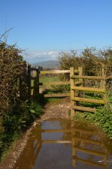 Muddy reflections on the cliff path above Beer, Devon