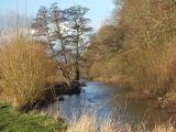 The River Otter near Otterton