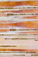 Paper Birch Bark Betula papyrifera