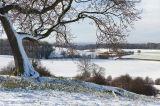 Ledsham fields in winter