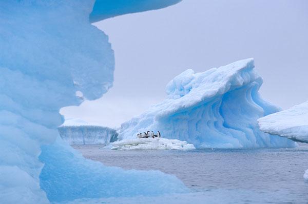 Blue Ice Cruisers