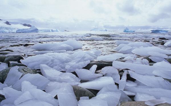 Ice Foreshore