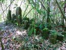 Ancient burial ground, Ranomafana